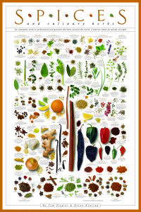 the spices poster by tim ziegler