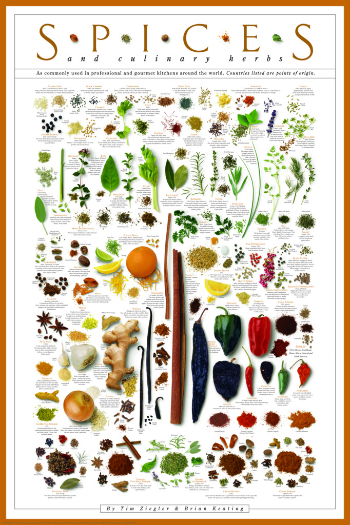 The Anatomy of The SPICES Poster - Chef Zieg