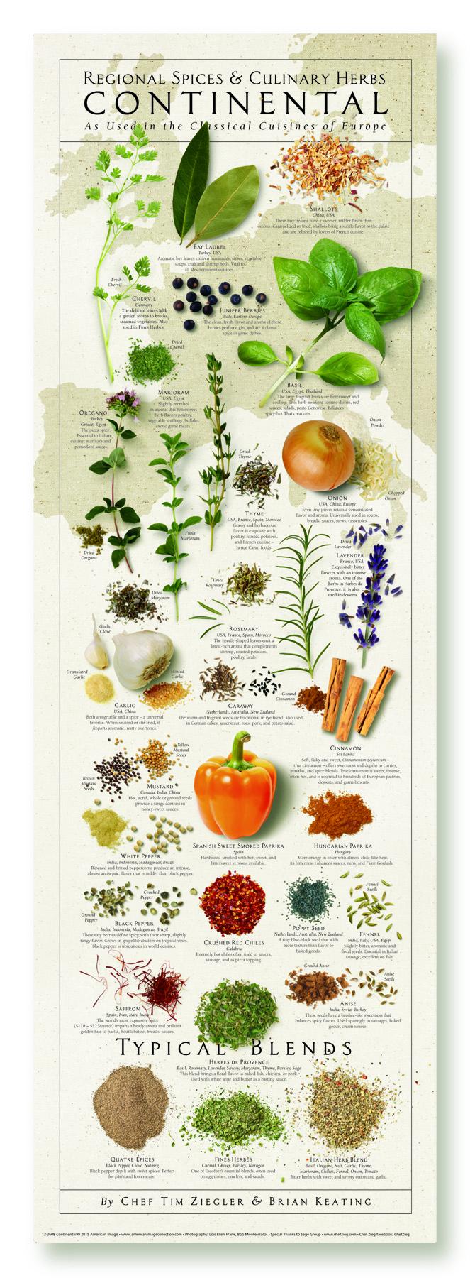 Continental (European) Regional Spices & Culinary Herbs Print